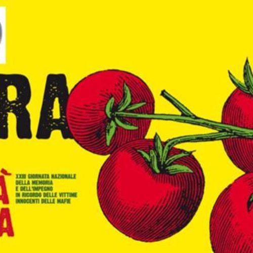 """Catania Libera fa i suoi """"100 passi verso il 21 marzo"""" e con Legambiente pianta alberi dedicandoli a 20 vittime delle mafie"""