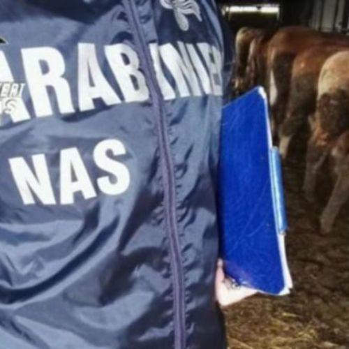 ENNA. CATANIA. Arrestato dai carabinieri un pregiudicato 45enne, per furto di acqua potabile proveniente dalla rete idrica pubblica.