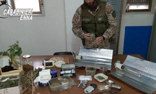 Nicosia. Arrestati padre e figlio per detenzione illegale di armi, coltivazione, detenzione e spaccio di stupefacenti, furto aggravato continuato