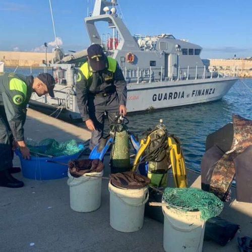 GDF ROAN PALERMO. Sequestrati Kg.80 di oloturie illecitamente pescate all'interno del porto di Licata.